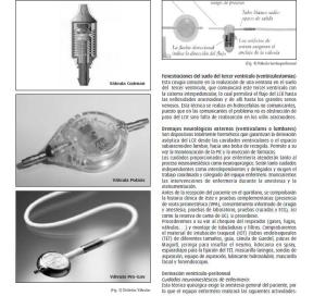 Fuente: www.enfervalencia.org